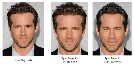 ryan-reynolds-symmetry-expe